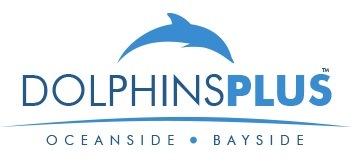Dolphins Plus